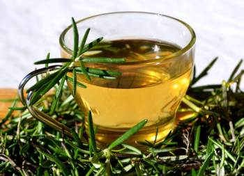 Herbal rosemary tea with green branches in a glass cup.