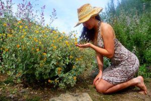 jardineria-en-tiempos-de-cambio-climatico-global