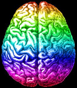 rainbow_brain_aug_2014