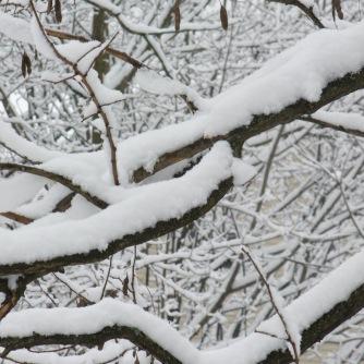 invierno3-by-imarie-nunez